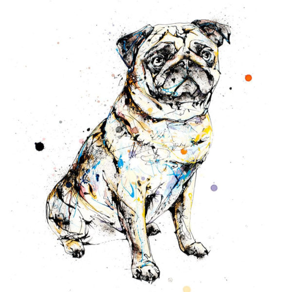 Expectation (Pug) open edition art print by Kathryn Callaghan