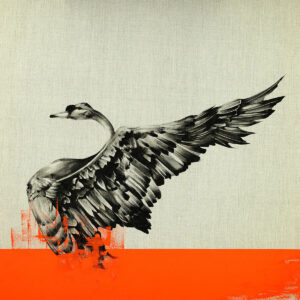 Black Swan Raw In Orange limited edition art print by Tommy Fiendish