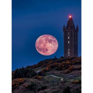 Flower Moon over Scrabo Tower by Stephen Henderson